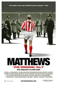 Matthews.2017.1080p.AMZN.WEB-DL.DDP5.1.H.264-TEPES – 5.3 GB
