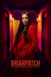 Briarpatch.S01E08.720p.WEBRip.x264-XLF – 693.1 MB