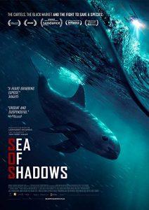 Sea.of.Shadows.2019.1080p.HULU.WEB-DL.DDP5.1.H.264-FC – 3.8 GB