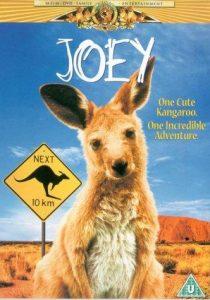 Joey.1997.1080p.AMZN.WEB-DL.DDP2.0.H.264-ETHiCS – 9.0 GB