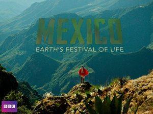 Mexico.Earth's.Festival.of.Life.S01.UNCUT.1080p.AMZN.WEB-DL.DD+2.0.H.264-Cinefeel – 11.6 GB