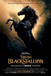 The.Young.Black.Stallion.2003.1080p.AMZN.WEB-DL.DDP5.1.H.264-ETHiCS – 4.4 GB