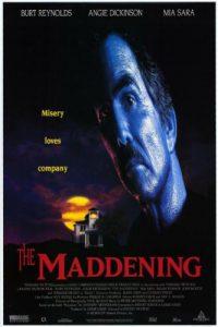 The.Maddening.1996.1080p.AMZN.WEB-DL.DD+2.0.H.264-BLUTONiUM – 8.3 GB