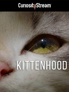 Kittenhood.2015.1080p.AMZN.WEBRip.DD2.0.x264-monkee – 3.3 GB