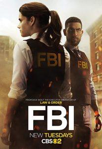 FBI.S02.720p.AMZN.WEB-DL.DDP5.1.H.264-NTb – 20.3 GB