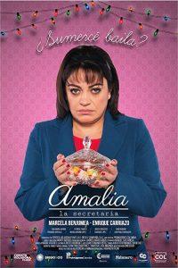 Amalia.la.Secretaria.2017.1080p.AMZN.WEB-DL.DDP2.0.H.264-KAiZEN – 5.9 GB