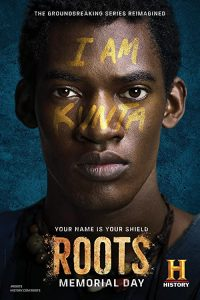 Roots.2016.S01.1080p.BluRay.x264-ROVERS – 29.5 GB