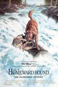 Homeward.Bound.The.Incredible.Journey.1993.1080p.AMZN.WEB-DL.DDP5.1.x264-ABM – 8.5 GB