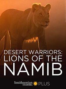 Desert.Warriors.Lions.of.the.Namib.2016.1080p.AMZN.WEB-DL.DDP2.0.H.264-NTb – 2.9 GB