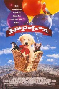 Napoleon.1995.1080p.AMZN.WEB-DL.DDP2.0.H.264-ETHiCS – 7.4 GB