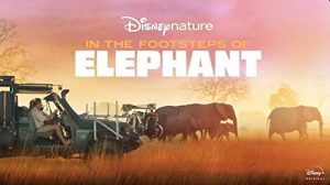 In.the.Footsteps.of.Elephant.2020.720p.DSNP.WEB-DL.DDP5.1.H.264-ETHiCS – 2.7 GB