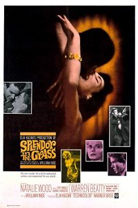 Splendor.in.the.Grass.1961.720p.WEB-DL.AAC2.0.H.264-ViGi – 3.5 GB