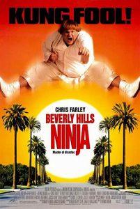 Beverly.Hills.Ninja.1997.1080p.AMZN.WEB-DL.DD+5.1.H.264-monkee – 9.1 GB