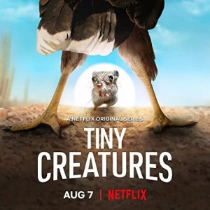 Tiny.Creatures.S01.720p.NF.WEB-DL.DDP5.1.x264-ExREN – 6.3 GB