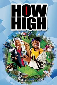 How.High.2001.1080p.AMZN.WEB-DL.DDP2.0.H.264-pawel2006 – 8.4 GB