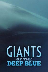 Giants.of.the.Deep.Blue.2017.720p.DSNP.WEB-DL.DDP5.1.H.264-SPiRiT – 1.4 GB