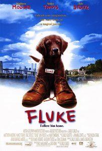 Fluke.1995.1080p.AMZN.WEB-DL.DD+.5.1.H264-VietTV – 9.7 GB