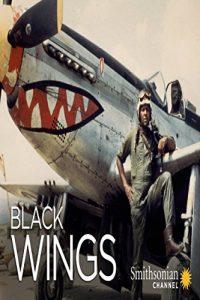 Black.Wings.2011.1080p.WEB.H264-KOMPOST – 1.6 GB