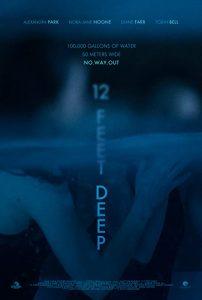 12.Feet.Deep.2017.1080p.Blu-ray.Remux.AVC.DTS-HD.MA.5.1-KRaLiMaRKo – 13.9 GB