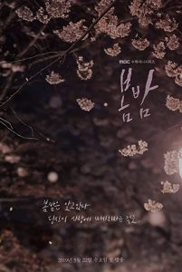 One.Spring.Night.S01.720p.NF.WEB-DL.DDP2.0.x264-ExREN – 12.5 GB