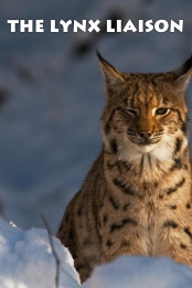 The.Lynx.Liaison.2010.1080p.WEB-DL.AAC.2.0.H.264-WiLDCAT – 2.3 GB