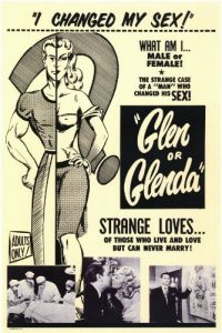 Glen.or.Glenda.1953.1080p.WEB-DL.AAC2.0.x264 – 2.6 GB