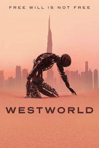 Westworld.S03.720p.BluRay.x264-WESTWORLD – 17.1 GB