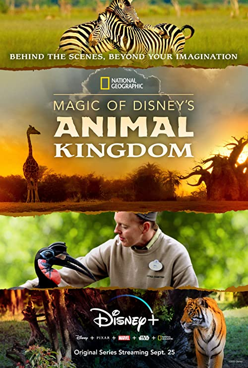 Magic.of.Disneys.Animal.Kingdom.S01.1080p.WEB-DL.DDP5.1.H.264-ROCCaT – 17.9 GB