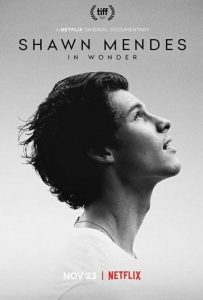 Shawn.Mendes.In.Wonder.2020.720p.NF.WEB-DL.DDP5.1.Atmos.H.264-NTb – 2.1 GB