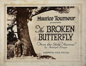 The.Broken.Butterfly.1919.1080p.WEB-DL.AAC2.0.H.264-SbR – 2.3 GB