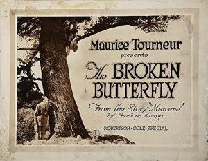 The.Broken.Butterfly.1919.1080p.WEB-DL.AAC2.0.H.264-SbR – 2.3 GB