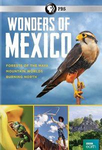 Wonders.of.Mexico.S01.720p.AMZN.WEB-DL.DDP2.0.H.264-NTb – 6.0 GB