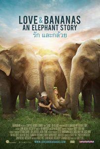 Love.&.Bananas-.An.Elephant.Story.2018.1080p.WEB-DL.AAC2.0.H.264-3cTWeB – 3.1 GB