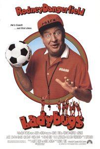 Ladybugs.1992.1080p.Blu-ray.Remux.AVC.DTS-HD.MA.5.1-KRaLiMaRKo – 21.2 GB