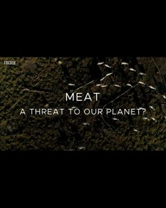 Meat-A.Threat.to.Our.Planet.2019.1080p.WEB-DL.AAC2.0.H.264-MVL – 2.2 GB