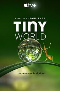 Tiny.World.S01.HDR.2160p.WEB-DL.DDP5.1.H.265-ROCCaT – 32.8 GB
