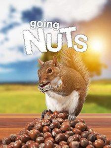 Going.Nuts.2019.1080p.AMZN.WEB-DL.DDP2.0.H.264-forFun – 3.7 GB