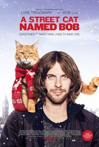 A.Street.Cat.Named.Bob.2016.1080p.BluRay.DD5.1.x264-DON – 11.7 GB