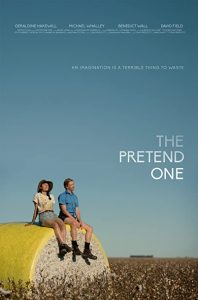 The.Pretend.One.2017.1080p.AMZN.WEB-DL.DDP2.0.H.264-hdalx – 3.1 GB