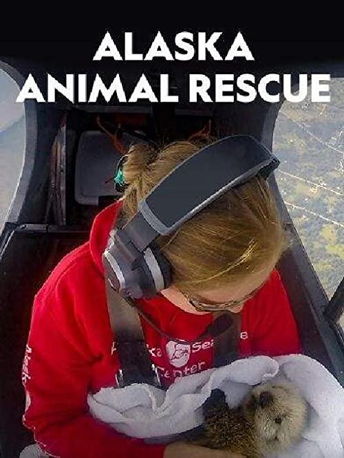 Alaska.Animal.Rescue.S01.1080p.WEB-DL.DDP5.1.H.264-ROCCaT – 16.0 GB
