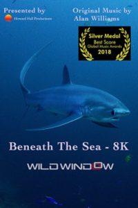 Wild.Window.Beneath.the.Sea.2018.1080p.WEB.h264-DOCiLE – 4.1 GB