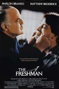 The.Freshman.1990.1080p.BluRay.REMUX.AVC.FLAC.2.0-TRiToN – 18.3 GB