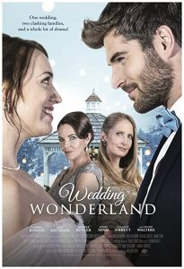 Wedding.Wonderland.2017.1080p.AMZN.WEB-DL.DDP2.0.H.264-ABM – 6.1 GB