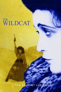 Die.Bergkatze.AKA.The.Wildcat.1921.720p.BluRay.FLAC2.0.x264-SPECTRE – 5.5 GB