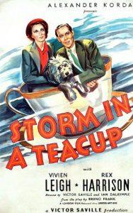 Storm.in.a.Teacup.1937.720p.Bluray.DTS.x264-GCJM – 3.9 GB