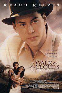 A.Walk.in.the.Clouds.1995.1080p.BluRay.REMUX.AVC.DTS-HD.MA.5.1-TRiToN – 26.1 GB