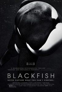 Blackfish.2013.1080p.CEE.Blu-ray.Remux.AVC.DTS-HD.MA.5.1-KRaLiMaRKo – 17.2 GB