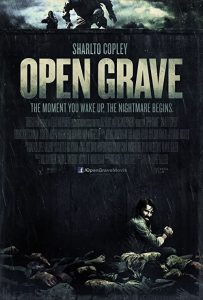 Open.Grave.2013.1080p.BluRay.REMUX.AVC.DTS-HD.MA.5.1-TRiToN – 22.9 GB