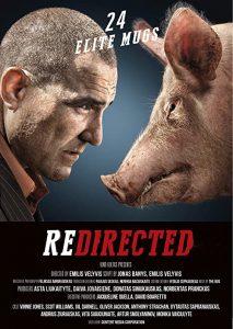 Redirected.2014.1080p.Blu-ray.Remux.AVC.DTS-HD.MA.5.1-KRaLiMaRKo – 20.8 GB