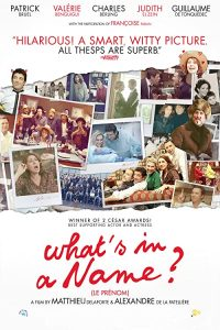 Whats.in.a.Name.2012.1080p.BluRay.x264-USURY – 10.9 GB